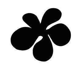 La Cocha Bamba fleur
